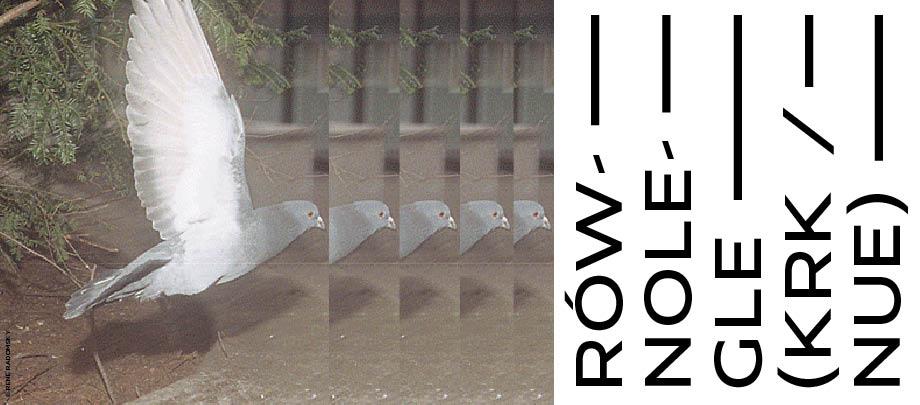 ronolegle_baner_www